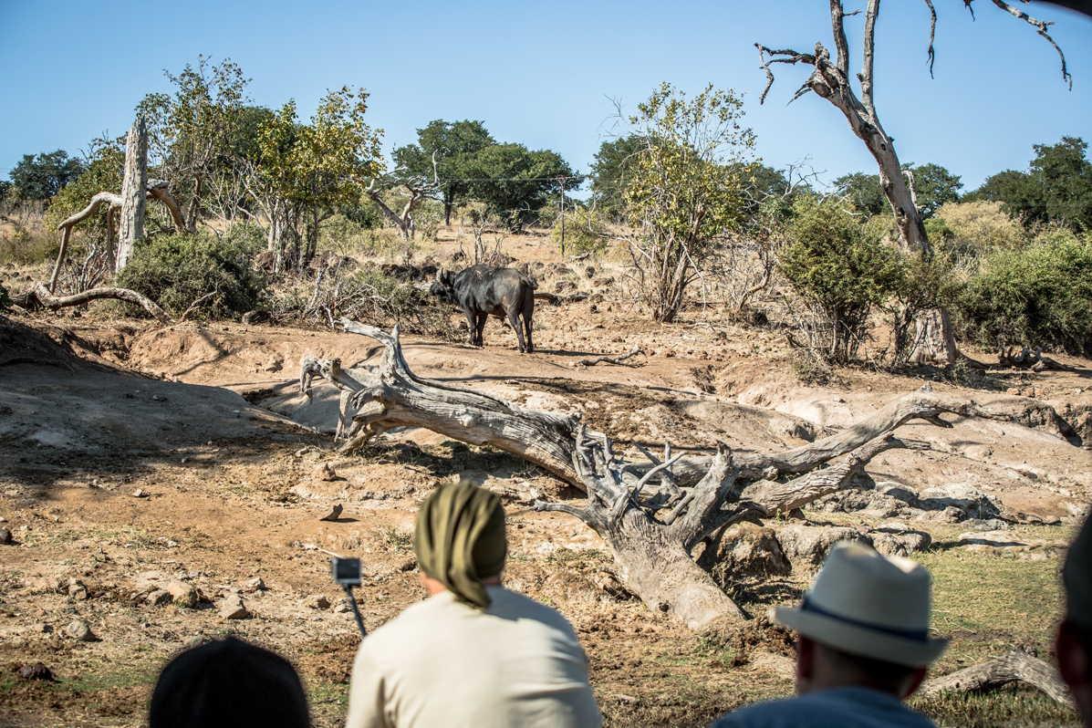 Botswana_016