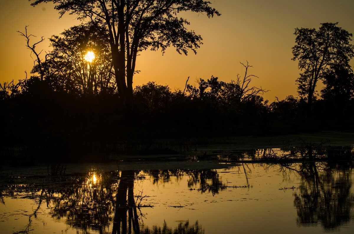 Botswana_044