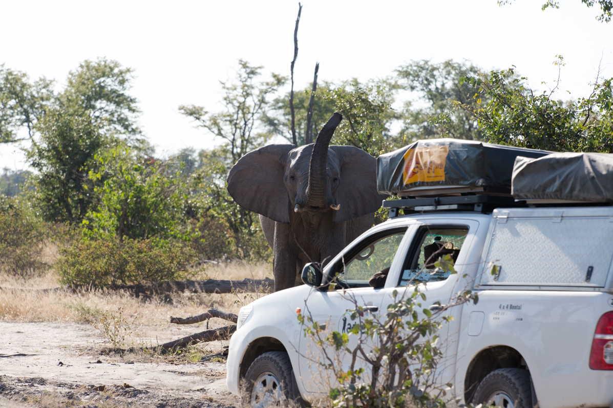 Botswana_062