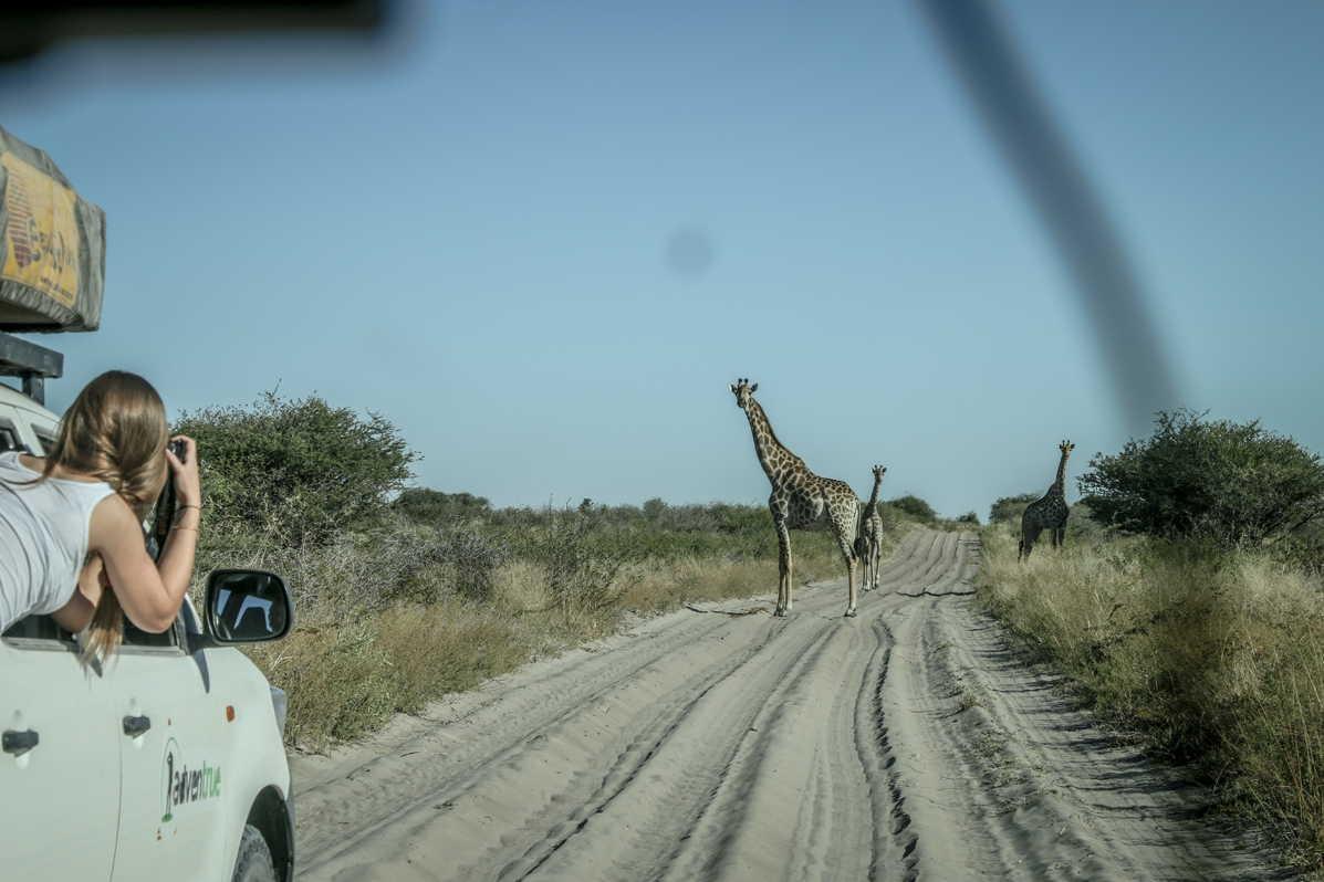 Botswana_073