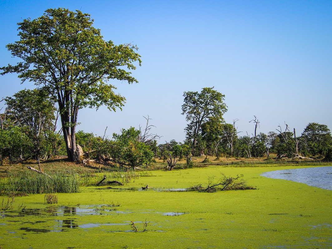 Botswana_079