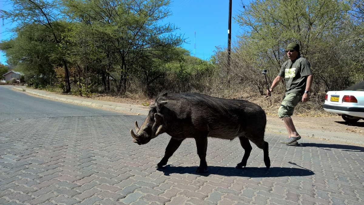 Botswana_092